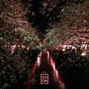 ESTA. - Aoyama (Single) bild