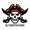 Fras Flossy (feat. C.V) - Single, DJ SNYPAYUSH