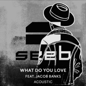 What Do You Love (feat. Jacob Banks) [Acoustic] - Single