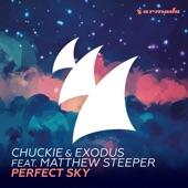 Perfect Sky (feat. Matthew Steeper) - Single