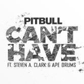 Can't Have (feat. Steven A. Clark & Ape Drums) - Single