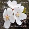 J-Ballad Music Box Collection