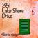 Blue Baby Moon (feat. Picidu) - 351 Lake Shore Drive