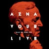 Aznavour Live - Palais des Sports 2015