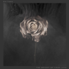 The Weight of Your Love (Deluxe Version) - Editors