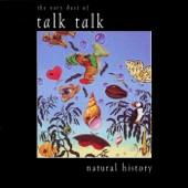 Talk Talk - My Foolish Friend