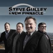 Steve Gulley & New Pinnacle - Leaving Crazy Town