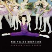The Felice Brothers - Ponzi