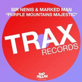 Purple Mountains Majestic Astronomar Remix