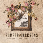 Bumper Jacksons - Darkness On the Delta