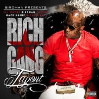 Tapout (feat. Lil Wayne, Birdman, Mack Maine, Nicki Minaj & Future) - Single - Rich Gang
