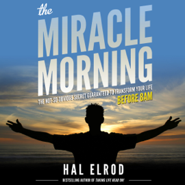 The Miracle Morning: The Not-So-Obvious Secret Guaranteed to Transform Your Life - Before 8AM (Unabridged) audiobook