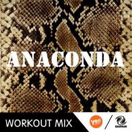 anaconda dj song