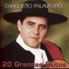 Chaqueño Palavecino - Dulcemente Me Recuerdas ilustración