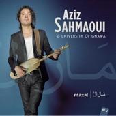 Aziz Sahmaoui - Afro maghrébin