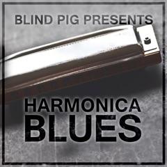 Blind Pig Presents: Harmonica Blues