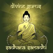 Sadhana Samadhi