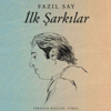 Fazil Say - İnsan İnsan (feat. Cem Adrian, Güvenç Dağüstün, Burcu Uyar & Selva Erdener) artwork