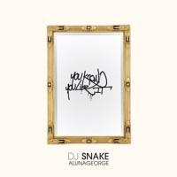 You Know You Like It - Single - DJ Snake & AlunaGeorge