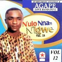 N'ulo Nnam Nigwe - Vol 12