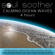 Soul Soother - Calming Ocean Waves (4 Hours) for Relaxation, Meditation, Reiki, Massage, Tai Chi, Yoga, Aromatherapy, Spa, Deep Sleep and Sound Therapy