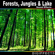Forest Ambience with Birds and a Creek - Digiffects Sound Effects Library