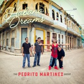 The Pedrito Martinez Group - Antadilla