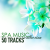 Spa Music Collection - 50 Tracks of Soothing Sounds of Nature for Wellness Centers and Hotel Lounge - Spa Music