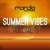 Summer Vibes, Vol.5