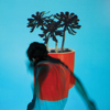 Local Natives - Everything All at Once artwork