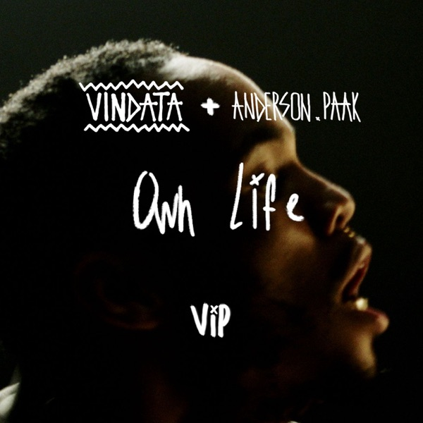 Own Life (feat. Anderson .Paak) [VIP Mix] - Single