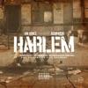 Harlem feat A AP Ferg Single