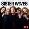 Sister Wives, Season 10 wiki, synopsis
