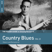 Rough Guide to Unsung Heroes of Country Blues, Vol. 2