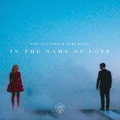 In The Name Of Love-Martin Garrix & Bebe Rexha