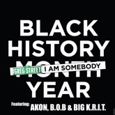 I Am Somebody (feat. Akon, B.o.B & Big K.R.I.T.) - Single
