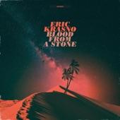 Eric Krasno - On the Rise