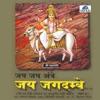 Jai Jai Ambe Jai Jagdambe Vol 7