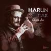 Harun Kolçak - Çeyrek Asır artwork