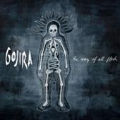 Gojira - Vacuity
