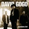 Vicksburg Call - David Gogo