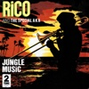 Jungle Music - Single - Rico Rodriguez & Special AKA