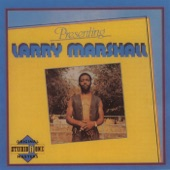 Larry Marshall - Wonderful World