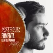 Antonio Castrignanò - Fomenta