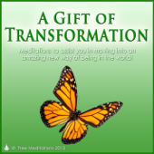 Gift of Transformation - Guided Meditations
