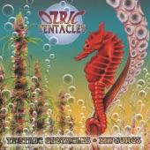 Ozric Tentacles - Velmwend
