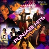 Punjabi Hits Mashup - Single