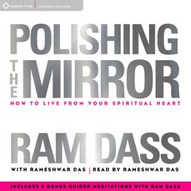 Polishing the Mirror audiobook