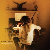 Gareth Liddiard - The Collaborator