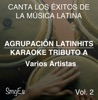Instrumental Karaoke Series: Varios Artistas, Vol. 2 (Karaoke Version)